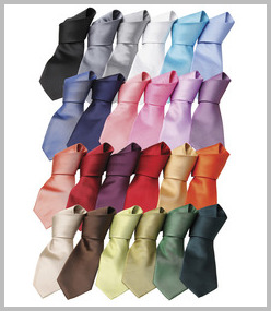 Premier Colours Fashion Tie
