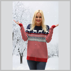 Christmas Jumper Nordic